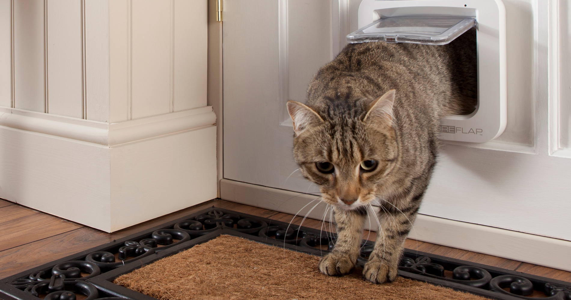 Qu'est-ce qu'une chatière électronique à puce ?